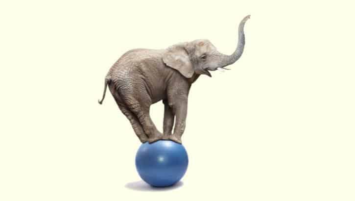 Moderniseer je applicaties: van logge olifant naar behendige ballerina
