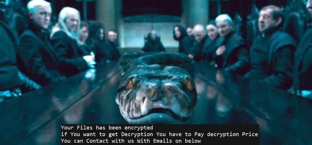 Ransomwarescript in Python richt zich specifiek op ESXi-servers